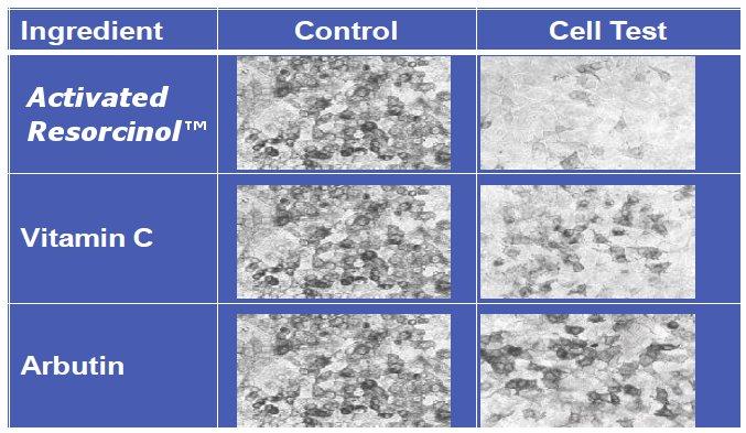 resorcinol-activated-compare-to-vit-c-and-arbutin